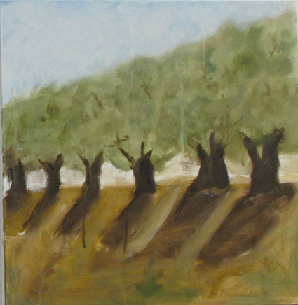 Olive trees 2